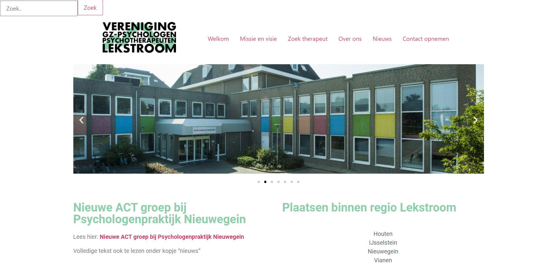 Website Vereniging GZ-psychologen & psychotherapeuten