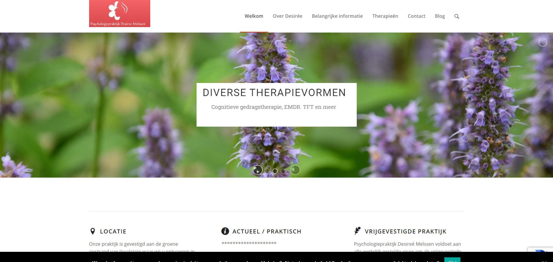 Website Psychologiepraktijk Desiree Melssen